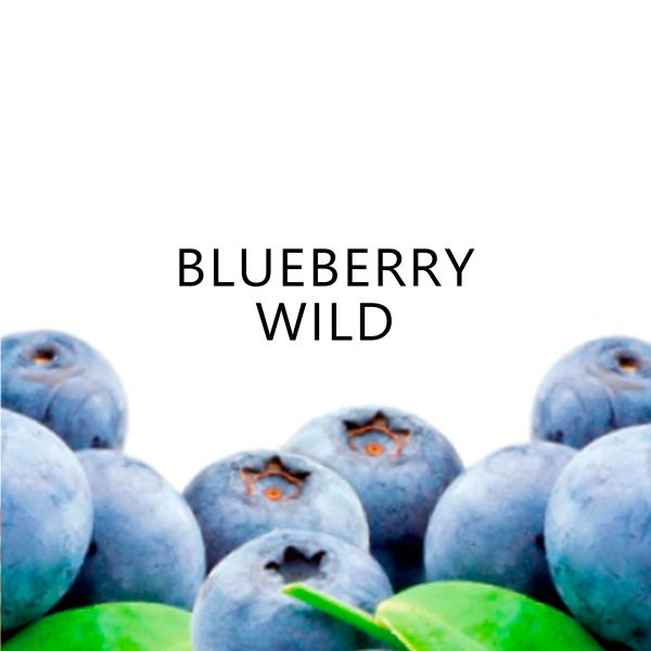 Essência TPA - Blueberry Wild Flavor