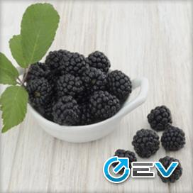 Essência TPA - Blackberry