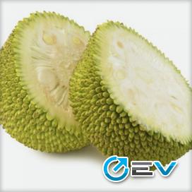 Essência TPA - Jackfruit