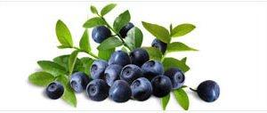 Líquido Importado - Joyetech - Blueberry